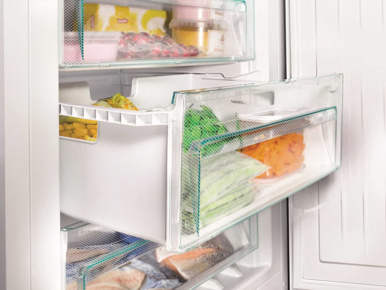 купить Двухкамерный холодильник Liebherr CNel 4813 Украина фото 13
